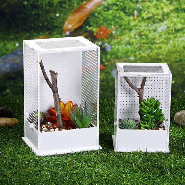 Jumping Spider / Mantis Enclosure Cage Terrarium