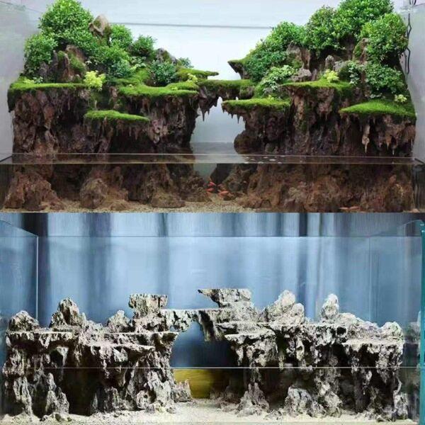 Complete Scaped Terrarium