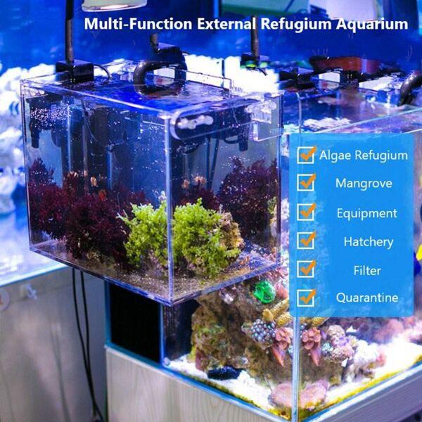 External Refugium, Breeder, Breeding Box, Skimmer Container