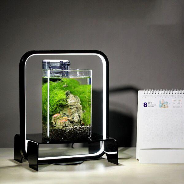 Miniature Ecological Fish Tank